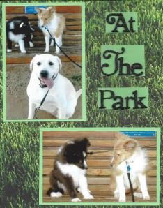 At The Park Page