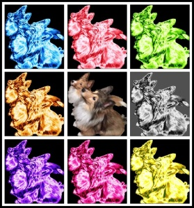 Collage of Dogs
