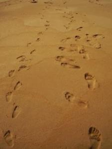 Dancing Footprints