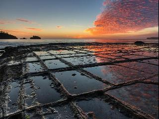 Eaglehawk Neck Tessellated Pavement, Tasmania