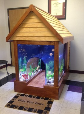 Fish Tank And Dog House